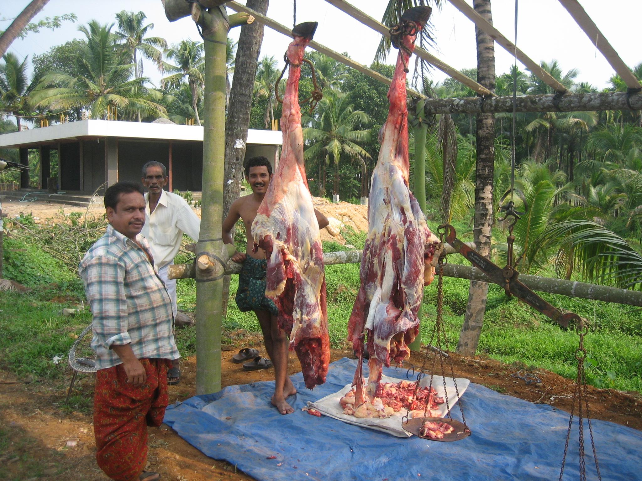 Geschlachtetes Fleisch trocknet an der frischen Luft