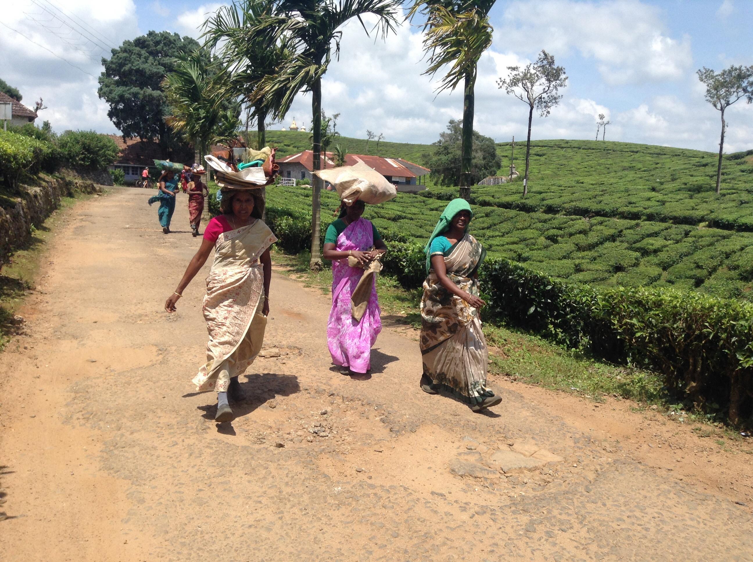 Indische Frauen balancieren Lebensmittel auf dem Kopf