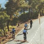 Megahalaya - Titelbild
